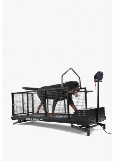 DOG RUNNER - XL