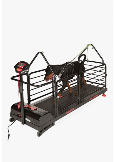 DOG RUNNER - Ortho Pro
