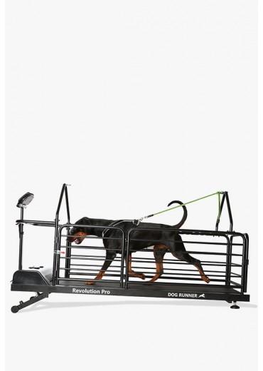 DOG RUNNER - Revolution Pro